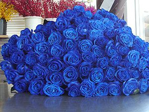 English: Blue roses 日本語: 青いバラ(束)