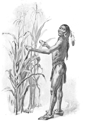 How Well The Corn Prospered. Squanto or Tisqua...