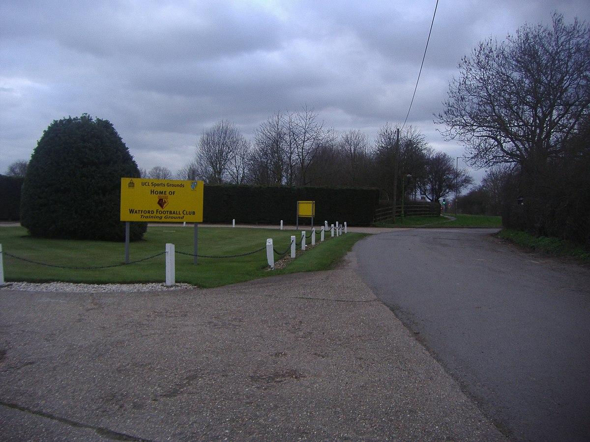 watford football club training ground