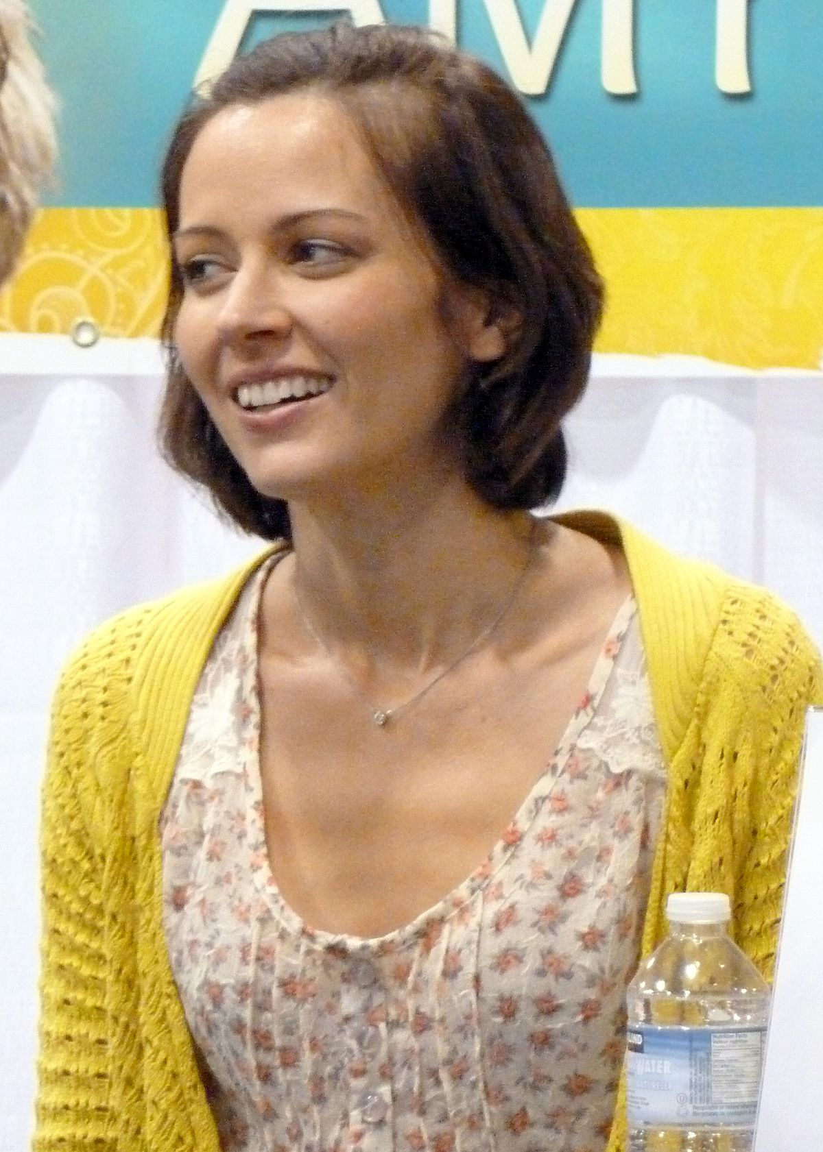 Amy Acker Wikipedia Bahasa Indonesia Ensiklopedia Bebas