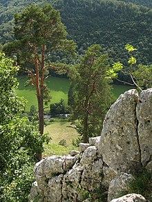Donaudurchbruch bei Schloss Bronnen