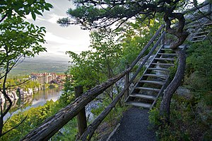 A branch of one of many hiking trails leading ...