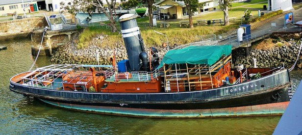 Queensland Maritime Museum - Joy of Museums - Freedom - Forceful - Tugboat
