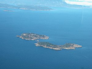 Aerial photograph I took myself of Ballenas Is...