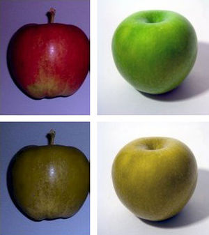 Side-by-side comparison of two images of apple...