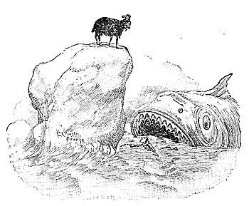 Il pescecane di Pinocchio