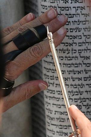 Reading Torah (Parashat Noah)