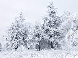 Winter Sing-along