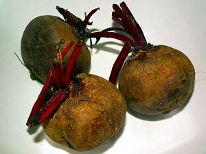 The beetroot, also known as the table beet, ga...