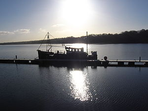 English: Morning on the River Foyle, Derry Cit...