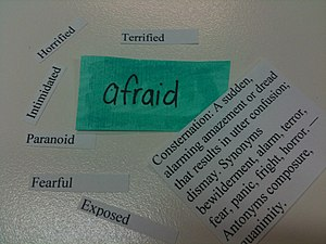 English: Words associated with Fear