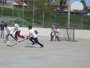 A game of street hockey in Toronto, Ontario, C...