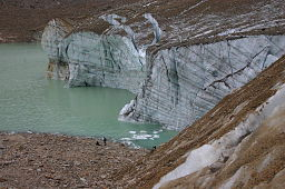 Cavell Glacier with Crevices and Annual Rings