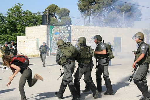 Israel Border Police in Nabi salih demonstration May 2011 3