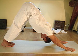 Yoga postures Ado-muka-shvanasana