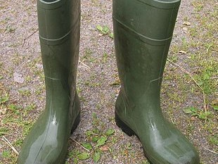 Image result for wellingtons