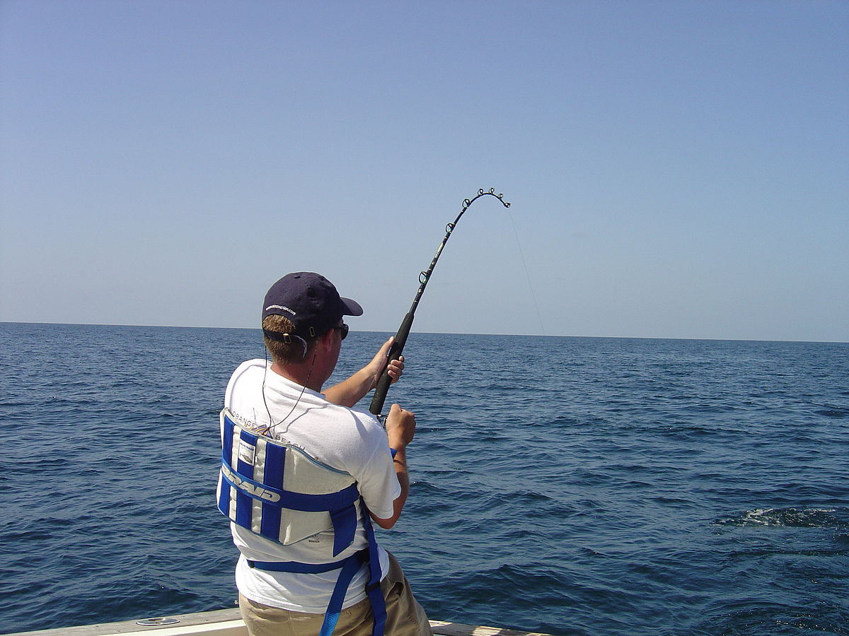 Image result for Fishing, That Is PHOTOS