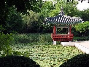 Garden in Jejudo