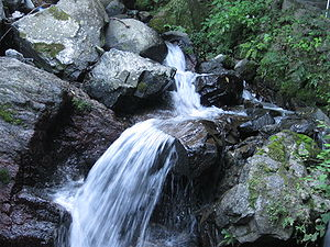 Streams (Yourou Waterfall)