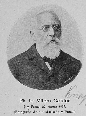 Portrait of Vilém Gabler (1821 - 1897), Czech ...