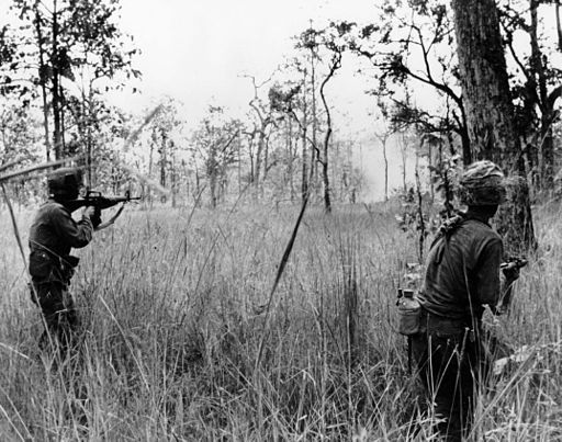 Battle of Ia Drang Valley LZ X-Ray 1965