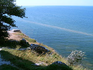 Algal bloom in the waters of Gotland, Sweden.