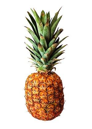 A ripe pineapple (Ananas comosus)