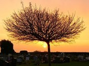 English: Highworth cemetery at the winter sols...