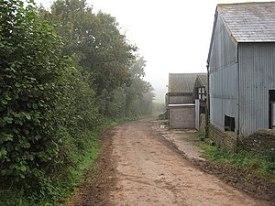 English: Hollow way from Ballingham Court Farm...