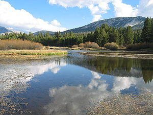 English: A wide spot in the Tuolumne River as ...