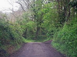 English: Narrow road at Cwmmiles, Login