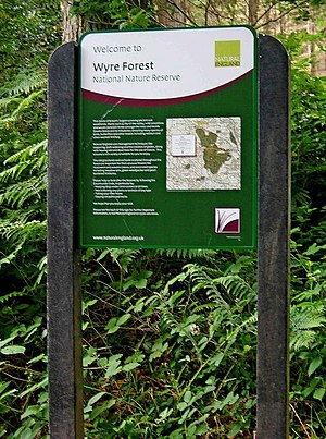 New Wyre Forest Information Board by Natural E...