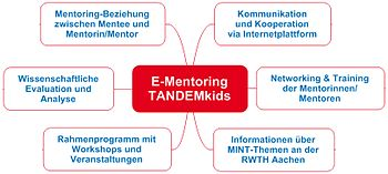 English: Modules of the mentoring-programme TA...
