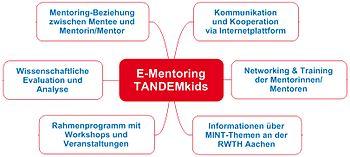 English: Modules of the mentoring-programme TA...