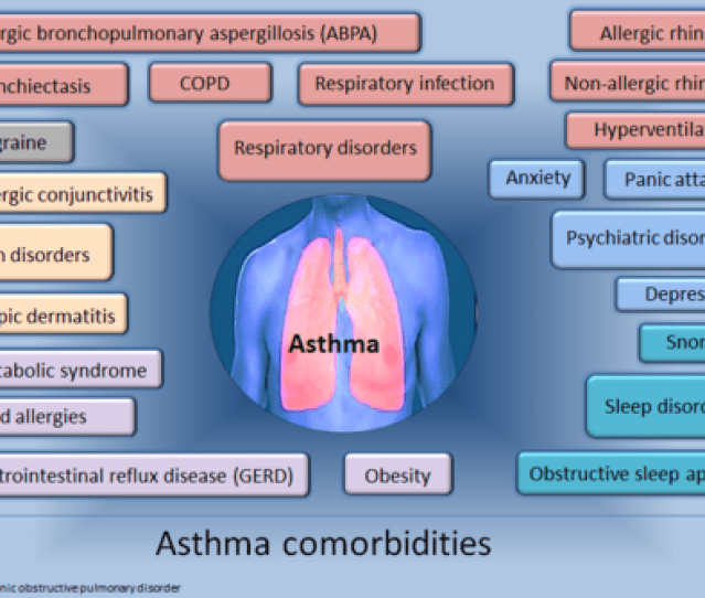 These Are Some Of The More Common Problems A Person With Asthma May Also Have