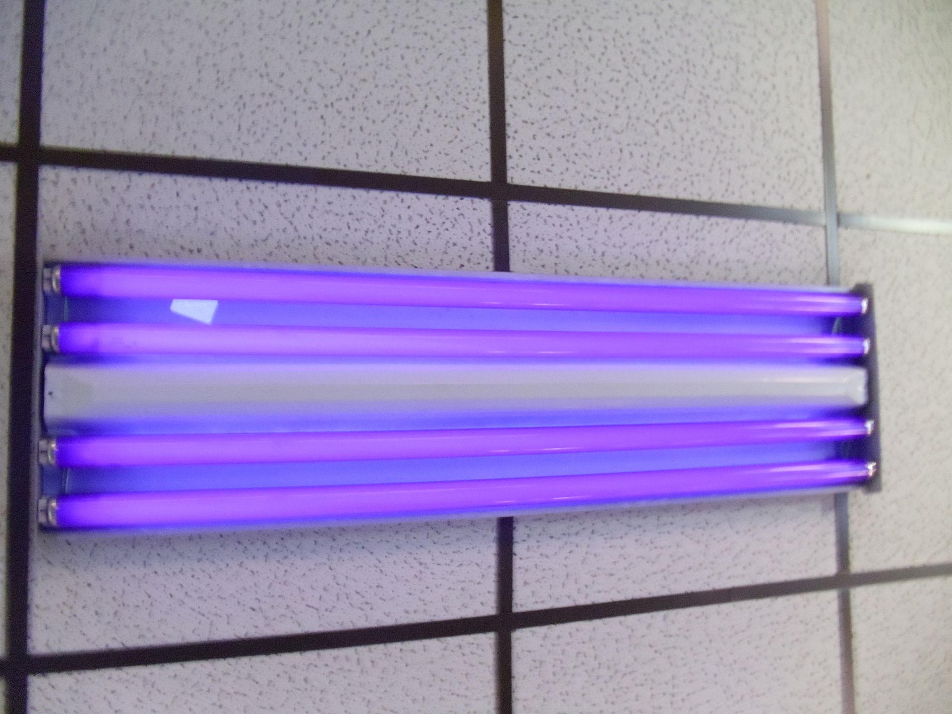 9 4 Fluorescent Light Bulbs 1