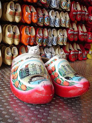 A Cat in a clog, in a clog shop in Amsterdam