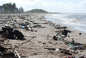 English: Showing the litter problem on the coa...