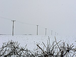 English: Power lines and hedge top near Llanma...