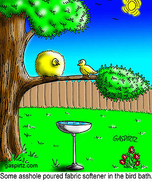 Cartoon of 2 birds talking about a bird bath.
