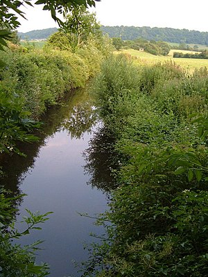 The Chard Canal near Lillesdon, Somerset
