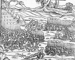 Batalla de Caransebes