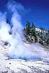 Beryl spring.jpg