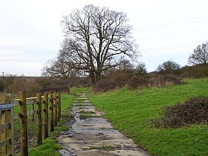 Fox's Cross Bottom - geograph.org.uk - 340095