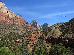 View of Mountains in Zion National Park, Utah,...
