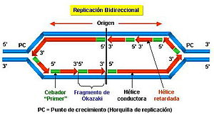 En la mayor�a de los casos la replicación es bidireccional