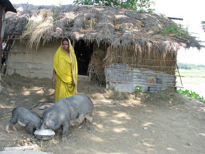 A poor village woman of Bangladesh