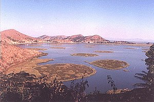 Loktak Lake area is a home to a wide range of ...