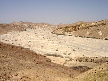 Wadi in Nahal Paran, Negev, Israel.