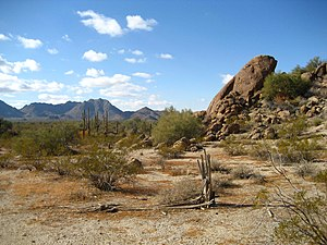 English: View of the Sonoran Desert approx. 30...